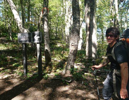 Trekkero en el bosque nativo