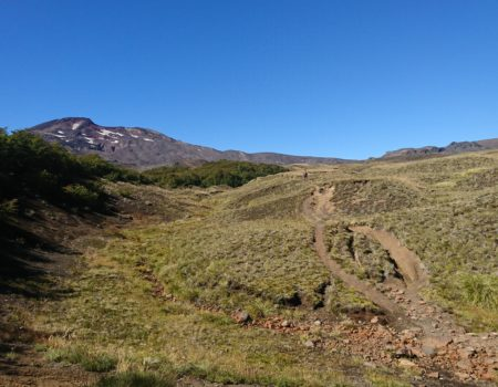 vista al volcán Quetrupillán