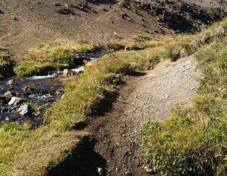 Estero de agua y volcán quetrupillán de fondo