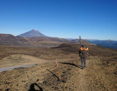 Sendero con trekkero y vista al volcán Lanin