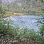 Laguna vista desde el bosque