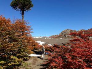 Trekking Lagunas Andinas