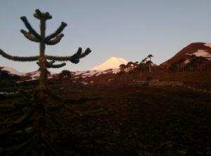 Volcán Llaima desde el inicio del ascenso