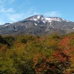 Volcán Quetrupillán y vegetación de otoño
