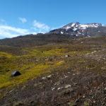 Terreno volcánico con vista al Volcán Quetrupillan
