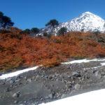 Volcán Lanin con paísaje de otoño