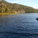 Lago Verde (Huerquehue)