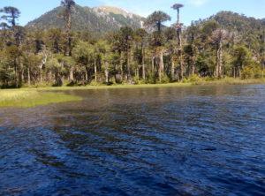 Parc national huerquehue