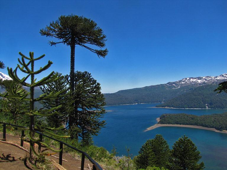 Mirador Sierra Nevada