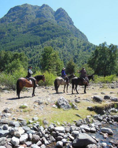 Caballos río y montañas
